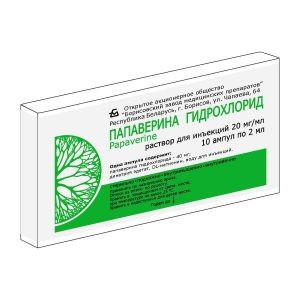 ПАПАВЕРИН Г/ХЛ Р-Р ДЛЯ ИН. 2% 2МЛ №10 БЗМ в Томске