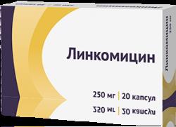 ЛИНКОМИЦИН КАПС. 250МГ №20 ОЗН в Туле