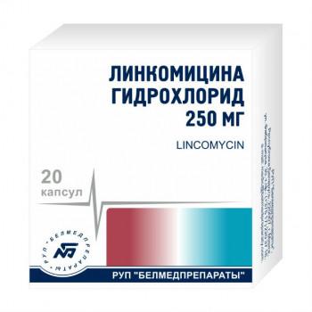 ЛИНКОМИЦИН КАПС. 250МГ №20 БМП в Чебоксарах